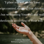 I place my will under Your sovereign control